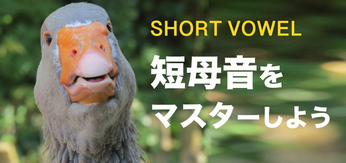 発音の基礎「母音」を正しくマスターしようPart1【英語発音】